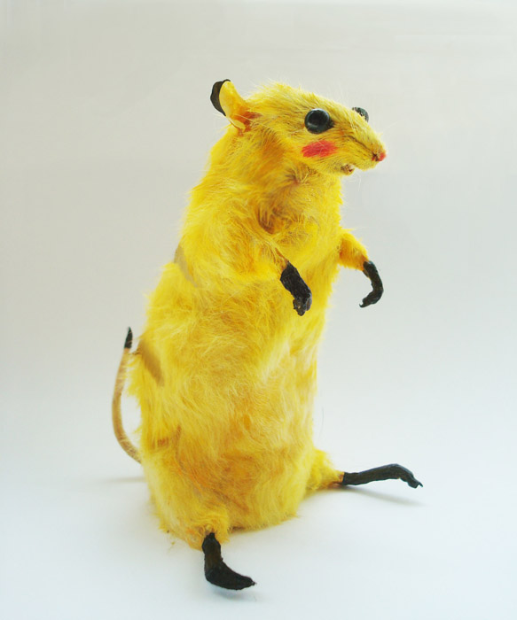 Bedding For Hamsters Pikachu - divya